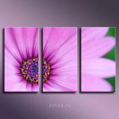 Модульная картина от 2stick.ru Нежный розовый цветок