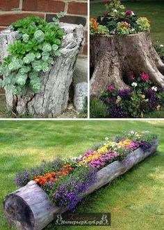 Garden Ideas and DIY Backyard Projects! Today we present you one collection of The BEST Garden Ideas and DIY Backyard Projects offers inspiring backyard ideas. These are amazing projects that you…More Tree Stump Planter, Log Planter, Planter Ideas, Tree Planters, Flower Planters, Diy Planters, Flowers Garden, Flower Gardening, Backyard Planters
