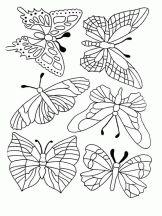 Coloriage Papillon sur Hugolescargot.com