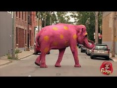 Funny VIDEO: Best of Just For Laughs Gags:  Most Crazy Complex Pranks - on YouTube    ...Pink Elephant, Mannequin Head, Fake Elevator, Ladies in Pink...