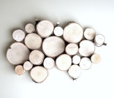 White Birch Forest Topography  by urban + forest