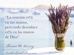 """""""La oración es†á  en tus manos, pero todo desenlace  es†á en las manos  de Dios""""  Sharon M Koenig  Nuevo libro LosCiclosdelAlma.com"""