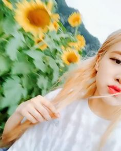 [IG] 190721 Hawaii - roses_are_rosie: Rose Video, Blackpink Video, Kpop Girl Groups, Korean Girl Groups, Kpop Girls, Tiffany Rose, Foto Rose, Blackpink Twitter, Black Pink Kpop