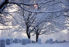 CHRISTMAS AT ARLINGTON NATIONAL CEMETERY.