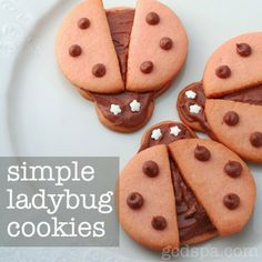 Simple Ladybug Cookies, no special cutters needed. Perfect for ladybug party theme.