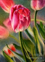 5x7 Paintings - Spring Breeze by Arena Shawn
