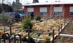 Mount Tabor Middle School Rain Garden created from existing area of hardstanding. Dealing with surface water run off, and providing a canvas for environmental education for the school and community.