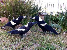 Australian Magpie Family by Catherine Stein skittykitty.com Felt Art, Magpie, Beautiful Birds, Sculpture, Crafty, Animals, Animales, Animaux, Sculpting