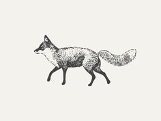 by Nudge http://dribbble.com/shots/1309824-Fox?list=popular&offset=24