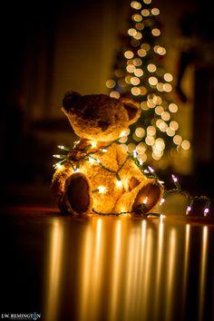 A Beary Christmas Eve by Jim Remington