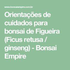 Orientações de cuidados para bonsai de Figueira (Ficus retusa / ginseng) - Bonsai Empire