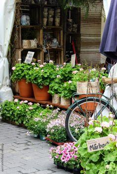 Piazzan: Trädgårdsdagar på LISEBERG