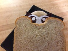 Owly does seem to get into predicaments. Owly sandwich, anyone? Day 143 of #yearofowly #lifeofowly
