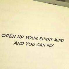 Fly Robin Fly