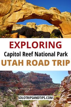 Visit Capitol Reef Utah for amazing hikes sunsets scenic road trips and amazing nature. Get outdoors and explore Utah for a solo trip family trip or romantic getaway! American National Parks, National Parks Usa, Us Travel Destinations, Road Trip Essentials, Road Trip Hacks, Solo Travel, Travel Usa, Travel Tips, Southwest Usa