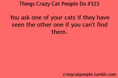 Things crazy cat people do. Good to know I'm not the only one.