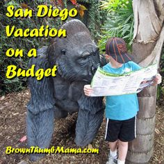 San Diego for a week, with 2 kids, on a budget?!? YES you can!