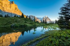 Alps - The Swiss alps, Eiger, Jungfrau.