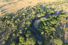 JACEK PAWLICKI PICTURES: Tanzania, Serengeti aerial, June 2017