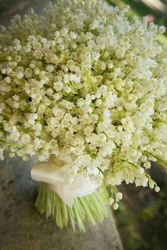 Lily of the Valley : ดอกนี้รูปทรงเหมือนระฆังเล็กๆ มีกลิ่นหอม นิยมใช้ในงานแต่งงาน มีความหมายว่า ความอ่อนหวานของคุณช่วยเติมชีวิตฉันให้สมบูรณ์