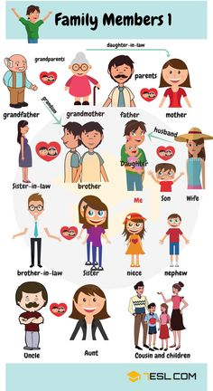 Members of the Family Vocabulary | Family Members Tree