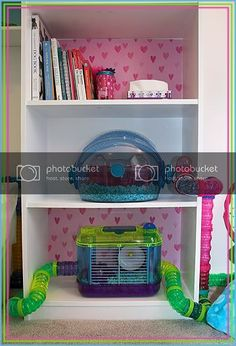 The hamster room DIY cage - Gallery Forum - Hamster Hideout Forum Hamsters As Pets, Cute Hamsters, Rats, Hamster Habitat, Hamster Care, Indoor Bunny House, Cool Hamster Cages, Baby Doll Nursery, Hamster House
