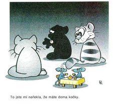 Funny Memes, Jokes, Humor, Caricature, Ted, Snoopy, Fictional Characters, Husky Jokes, Humour