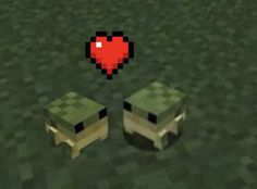 Gato Do Minecraft, Cute Memes, Funny Memes, Animal Gato, Frog Pictures, Frog Art, Cute Frogs, Frog And Toad, Oui Oui