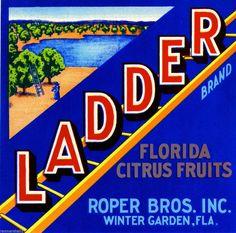 A citrus label for Ladder Brand Florida Citrus Fruits from Roper Brothers, Inc. of Winter Garden, Florida. Winter Garden Florida, Orange Crate Labels, Label Art, Vegetable Crates, Vintage Florida, Vintage Winter, Old Ads, Vintage Labels, Vintage Advertisements