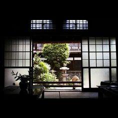 Japanese Garden inside. Looks relaxing