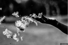 Meditation: The Presence of Mind to Let Go. ~ Dana Gornall & Catherine Beekmans