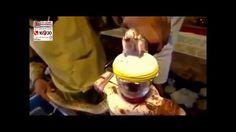 ماذا يفعل سم الثعبان بدم الإنسان ؟