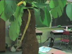 Rainforest Classroom part 1