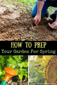 How To Prep Your Garden For Spring   Spring Garden Prep   Free Printable  Planting Notebook