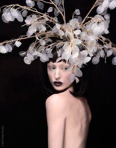 Lunaria headpiece.. Honesty