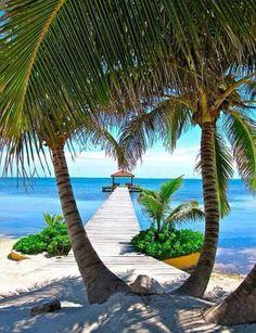 Beach #beach #summer #ocean #sand #travel #palmtrees #tropical #sky #sea #sun  #sunset