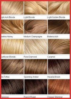 2015 Blonde Color Shades for Hair - Hair Color Chart, Blonde Hair Shades, Dyed Blonde Hair, Brown Blonde Hair, Blonde Honey, Hair Dye, Ash Hair, Honey Hair, Blonde Hair Palette, Golden Blonde Hair