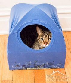Cat T-Shirt Tent