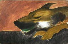 Animal - Animal Head - Dog in motion