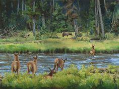 "Wildlife Art International: Wildlife, Landscape Painting ""Elk Calves Crossing the Madison River"" by Colorado Artist Nancee Jean Busse, Painter of the American West"