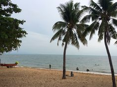 Beach, Water, Outdoor, Vacation, Water Water, Aqua, Outdoors, The Beach, Seaside