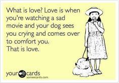 LOVE IS....    www.pitbullcrew.com