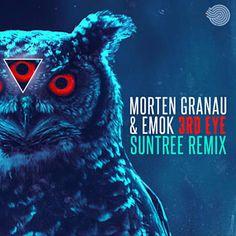 Found 3rd Eye by Morten Granau & Emok with Shazam, have a listen: http://www.shazam.com/discover/track/143059030