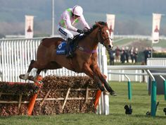 Faugheen clears the last in fine style to win the Neptune at the Cheltenham Festival.