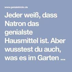 Jeder weiß, dass Natron das genialste Hausmittel ist. Aber wusstest du auch, was es im Garten vollbringen kann?