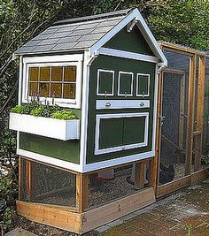Raising chickens in your backyard in a build your own chicken coop is the best way to get fresh organic eggs. Many people that are looking to raise chickens search for a small or medium sized chicken coop design to Inside Chicken Coop, Cute Chicken Coops, Diy Chicken Coop Plans, Chicken Coop Designs, Building A Chicken Coop, City Chicken, Chicken Life, Chicken Runs, Chicken Houses