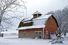 Old Country Barn in Winger, Walla Walla, Washington