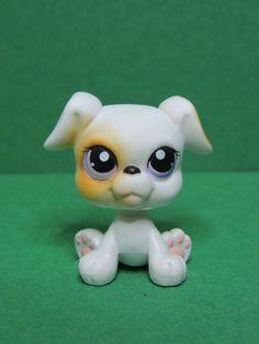 #84 chien dog white & Brown boxer purple eyes LPS Littlest Pet Shop Figurine