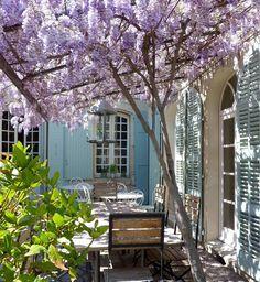 La Provence authentique, les vignes, la lumière… C'est dans le Comtat Venaissin que la journaliste (1) se ressource en famille. On la suit.