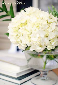 hydrangea in a simple glass pedestal vase/bowl